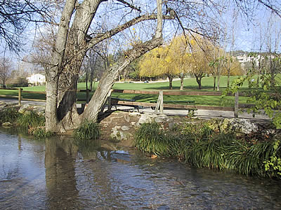 Aix parcs aix en provence - Plantes bassin de lagunage aixen provence ...